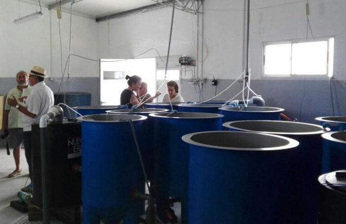 estacion experimental de Cabo Polonio